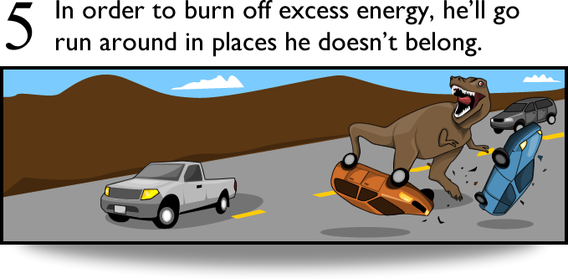 5. In order to burn off excess energy, he'll go run around in places where he doesn't belong.
