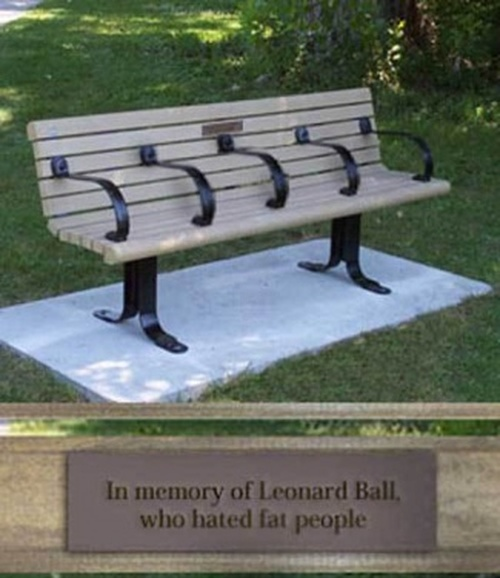 The skinny mans bench, in memory of Leonard Ball, who hated fat people